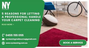 Letting a Professional Handle your Carpet Cleaning