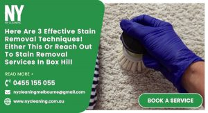 Stain Removal Services box hill