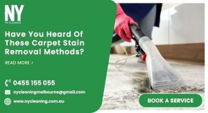 carpet stain removal methods